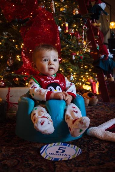 December 2016 (230 of 435)