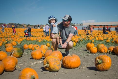 pumpkin-patch-11-of-20