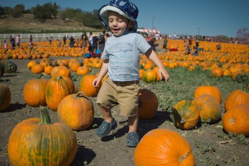 pumpkin-patch-8-of-20