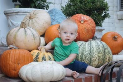 Pumpkin Carving 2018 (26 of 31)
